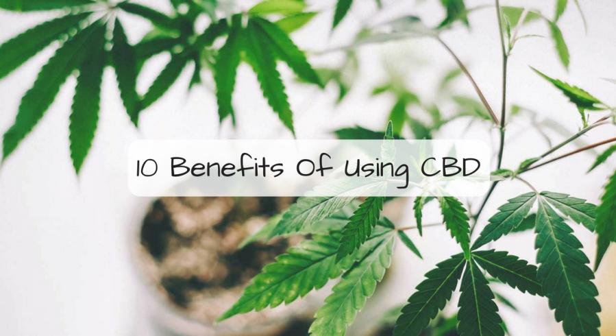 10 Benefits Of Using CBD