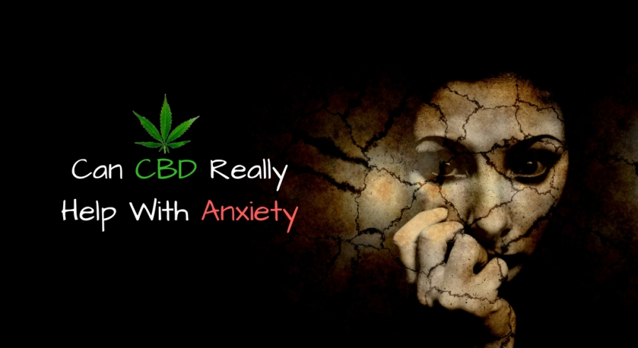 Can CBD Really Help With Anxiety