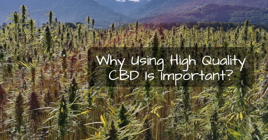 Why Using High Quality CBD Is Important?