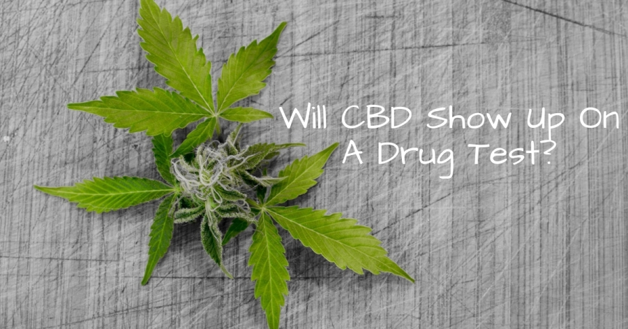 Will CBD Show Up On A Drug Test?