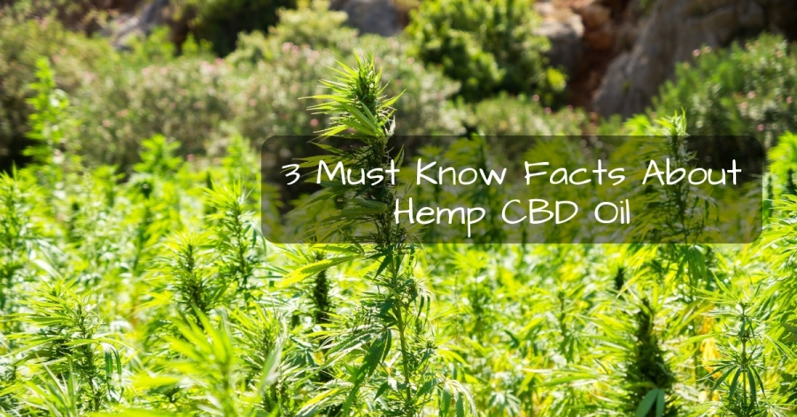 3 Must Know Facts About Hemp CBD Oil