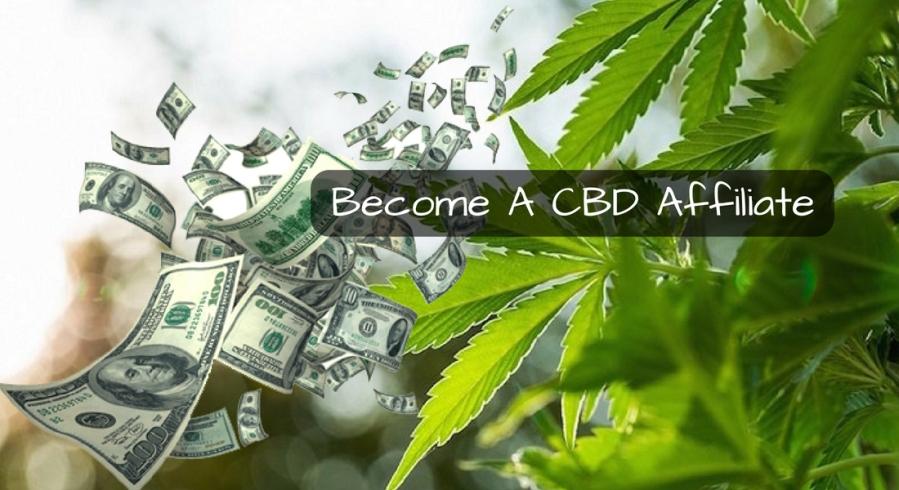 Become A CBD Affiliate